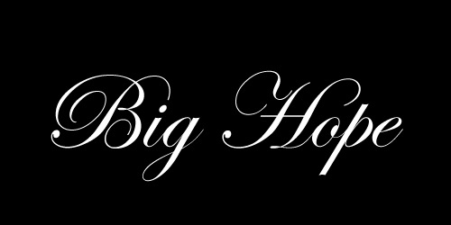 Big Hope Website